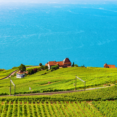 Railway line at Lavaux Vineyard Terraces hiking trail, Lake Geneva, Lavaux-Oron district, Switzerland