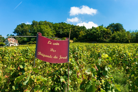 Lavaux, Switzerland - August 30, 2016: Name board at Vineyard Terraces hiking trail of Lavaux, Lavaux-Oron district of Switzerland Editorial