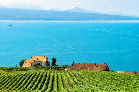 Chalets near Vineyard Terraces hiking trail of Lavaux, Lake Geneva and Swiss mountains, Lavaux-Oron district, Switzerland Stock Photo