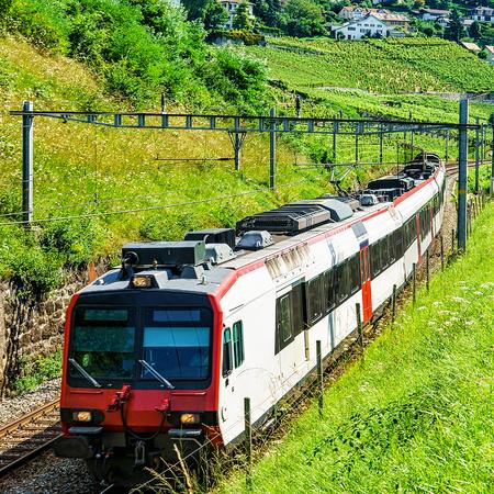 wine road: Swiss running train at Vineyard Terraces hiking trail of Lavaux, Lavaux-Oron district, Switzerland