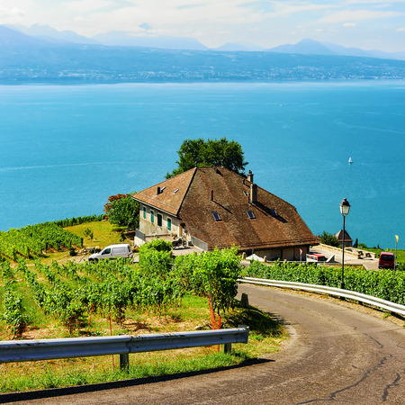Road leading to Lavaux Vineyard Terraces hiking trail, Lake Geneva and Swiss mountains, Lavaux-Oron district, Switzerland