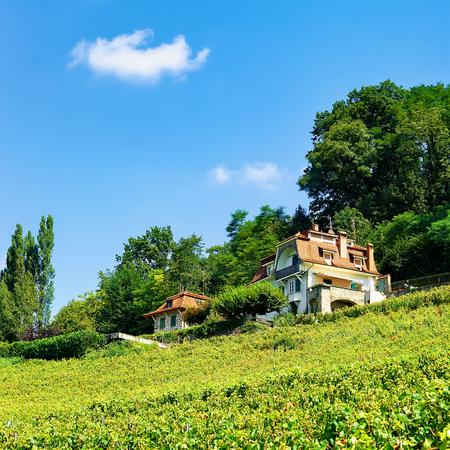 Chalet in Lavaux Vineyard Terraces hiking trail, Lavaux-Oron district in Switzerland Stock Photo