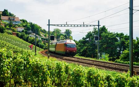 wine road: Running train at the railroad Lavaux Vineyard Terrace hiking trail, Lavaux-Oron district, Switzerland