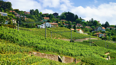 montreux: Railroad in Lavaux Vineyard Terraces hiking trail, Lavaux-Oron district in Switzerland
