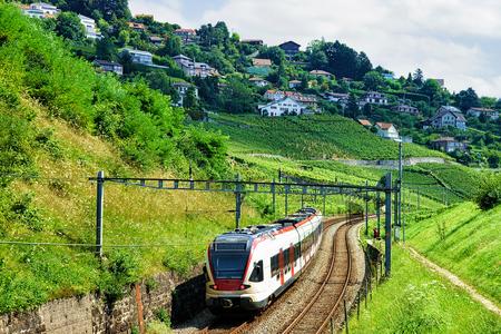 wine road: Running train at the railroad on Lavaux Vineyard Terraces hiking trail, Lavaux-Oron district, Switzerland