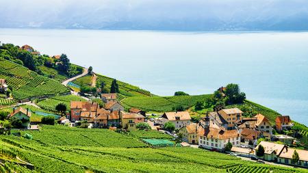 Countryside of Lavaux Vineyard Terraces hiking trail, Lake Geneva and Swiss mountains, Lavaux-Oron district, Switzerland