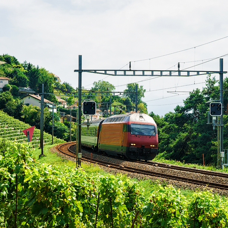wine road: Running train and the railroad in Lavaux Vineyard Terrace hiking trail, Lavaux-Oron district, Switzerland