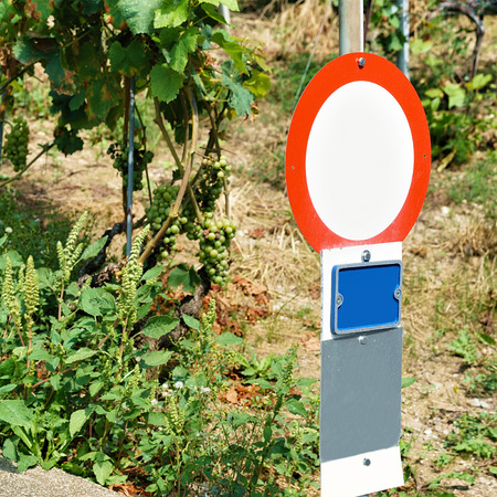 wine road: Road Sign at Vineyard Terraces hiking trail of Lavaux, Lavaux-Oron district Switzerland