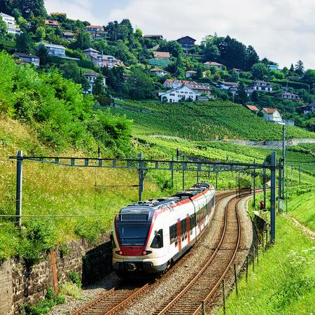 Running train at the railroad at Lavaux Vineyard Terraces hiking trail, Lavaux-Oron district, Switzerland