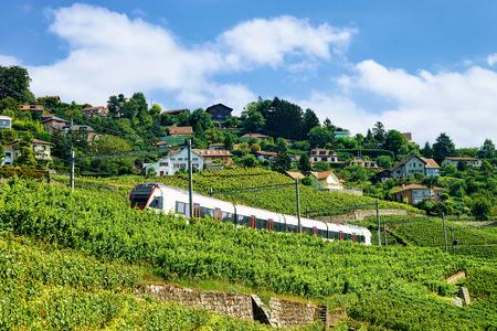 Running train at the railroad at Lavaux Vineyard Terrace hiking trail, Lavaux-Oron district, Switzerland Stock Photo