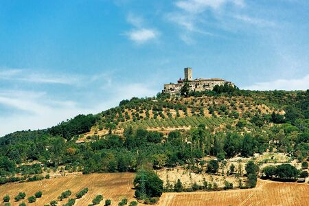 agronomic: Agricultural field and ancient castle with a tower in summer