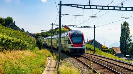 Running train in Vineyard Terrace hiking trail of Lavaux, Lavaux-Oron district, Switzerland
