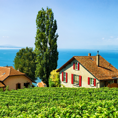 montreux: Swiss Chalets at Vineyard Terraces hiking trail of Lavaux, Lake Geneva and Swiss mountains, Lavaux-Oron district, Switzerland