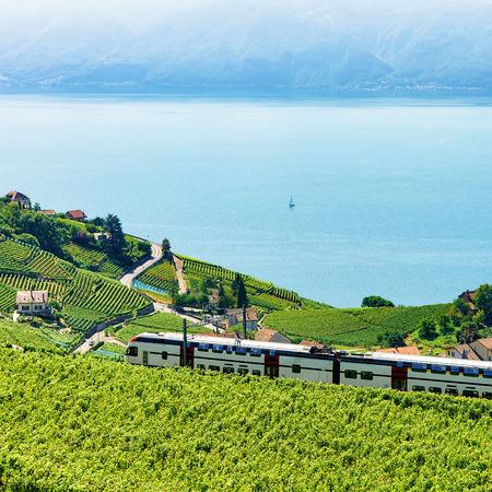 Train in Vineyard Terraces in Lavaux near Lake Geneva and Swiss Alps, Lavaux-Oron district, Switzerland