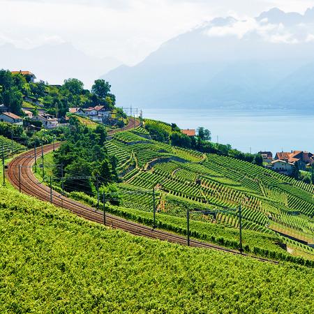 Railway line in Lavaux Vineyard Terrace hiking trail, Lake Geneva and Swiss mountains, Lavaux-Oron district, in Switzerland