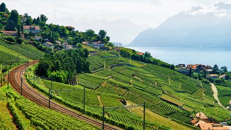 Ligne de chemin de fer sur vignoble en terrasses de Lavaux sentier de randonnée, le lac Léman et les montagnes suisses, district Lavaux-Oron en Suisse Banque d'images - 76050889