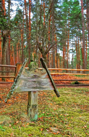ethnographical: Riga, Latvia - December 27, 2011: Wooden sculpture in Ethnographic open air village in Riga, Latvia