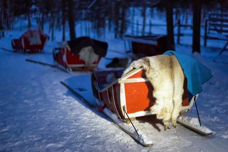 rovaniemi: Sledges in the farm in Rovaniemi, Lapland, Finland. Toned Stock Photo