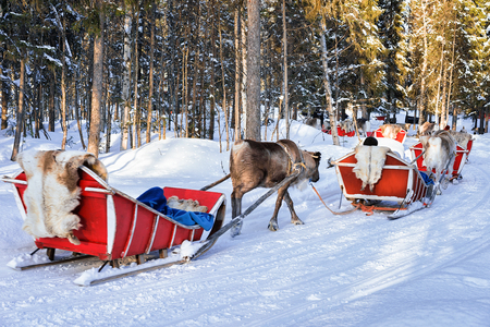 People at Reindeer sledge caravan in winter Rovaniemi forest, Lapland, Finland