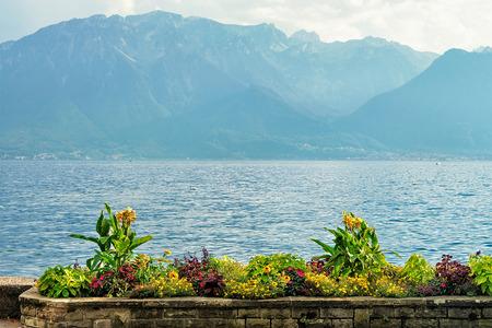 vevey: Nature of Geneva Lake in Vevey, Vaud canton, Switzerland Stock Photo