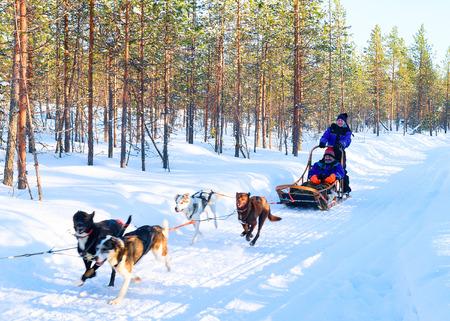 Rovaniemi, Finnland - 5. März 2017: Familie, die heisere Hunde rodelt, die in Rovaniemi, Lappland in Winter Finnland rodeln
