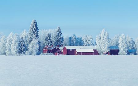 晴れた日に、フィンランドのラップランドで冬の田舎のコテージ