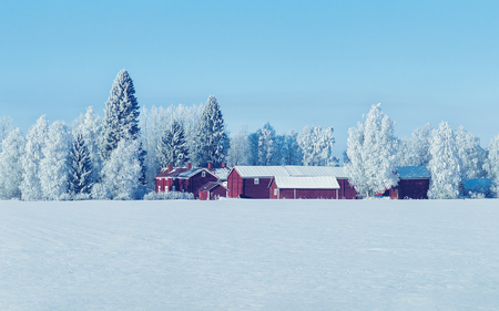 Cottage in winter countryside at Lapland, Finland, in a sunny day