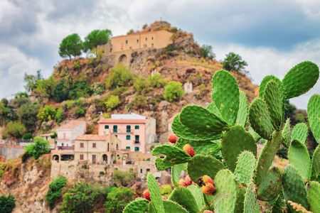 Beautiful landscape with cactus plant and Savoca village on the mountain, Sicily, Italy