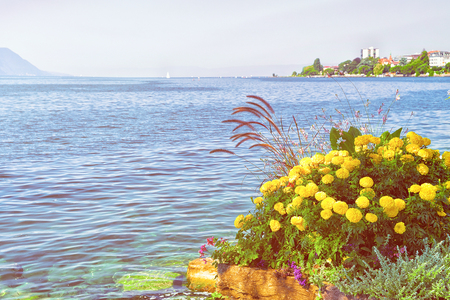 Flowers bloom at embankment of Geneva Lake in Montreux, Switzerland. Sunlight toned Stock Photo