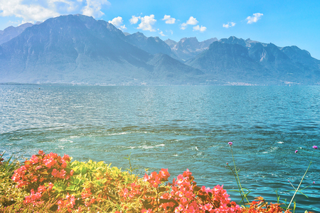 Flowers blossoming on the embankment of Geneva Lake in Montreux, Vaud canton, Switzerland