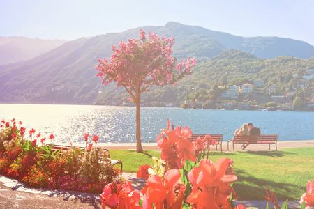 Ascona, Switzerland - August 23, 2016: Beautiful flowers at promenade of the expensive resort in Ascona on Lake Maggiore, Ticino canton, Switzerland. Sunlight toned