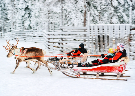 Rovaniemi, Finland - December 30, 2010: People in Reindeer Sleigh Ride in Winter Snow Forest at Finnish Saami Farm in Rovaniemi, Finland, Lapland at Christmas. At the North Arctic Pole.