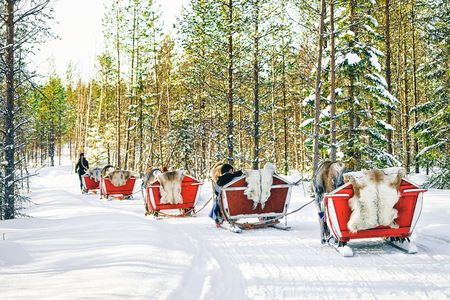 Reindeer sleigh in Finland in Lapland in winter. Stock Photo