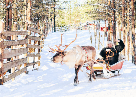 Man riding Reindeer sled in Finland in Lapland in winter. Editorial