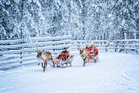 Rovaniemi, Finnland - 30. Dezember 2010: Rennen auf dem Rentierschlitten in Finnland in Lappland im Winter.