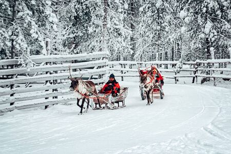 Rovaniemi, Finland - December 30, 2010: Racing on the Reindeer sled in Finland in Lapland in winter.