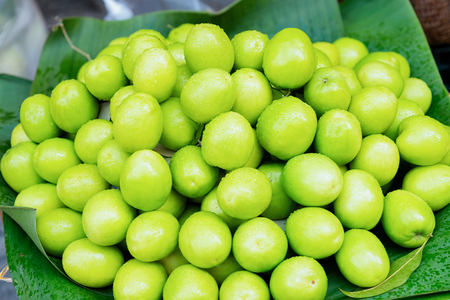 Green star apple fruit as Exotic asian food in Hanoi in Vietnam. Chrysophyllum cainito on Street market with Vietnamese cousine. Local produce from garden. Healthy vegetarian stuff