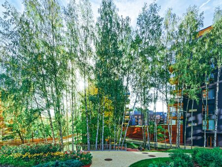 Birch trees at Modern glass residential building. And outdoor facilities. Reklamní fotografie