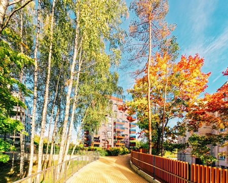 Birch trees and Modern glass residential apartment building. And outdoor facilities.