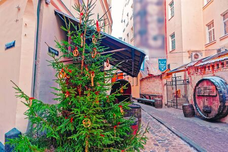 Christmas tree at Historic medieval streets decorated for Christmas in winter Riga in Latvia.