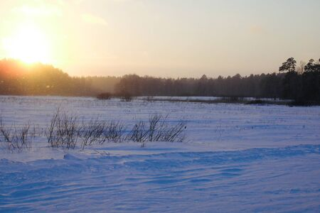 Sunrise at Winter snow forest background Landscapes and cold nature