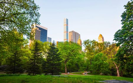 Central park South New York, great design for any purposes. Midtown Manhattan, USA. View with Skyline of Skyscrapers architecture in NYC. Nature background. Urban cityscape. NY, US Stock Photo