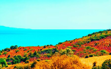 Villasimius nature and Mediterranean Sea on Sardinia Island in Italy reflex
