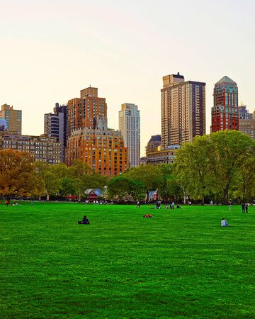 Green lawn and Manhattan skyline in Central Park reflex Zdjęcie Seryjne
