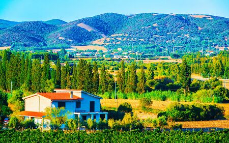 Rural landscape. Cottage and Beautiful vineyards in Perdaxius, Carbonia-Iglesias. Panorama in South Sardinia island of Italy. Scenery of Sardegna in summer. Cagliari province. Mixed media.