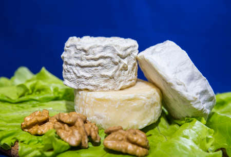cheese of three varieties on a plate with lettuce leaves and walnuts (Saint-remy, Crottin d Eyubonne, Shayba) Stock Photo