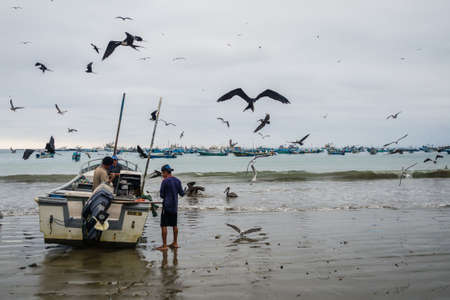 Birds near fishermen in the beach of Puerto Lopez in Ecuador, Waiting for food Editorial
