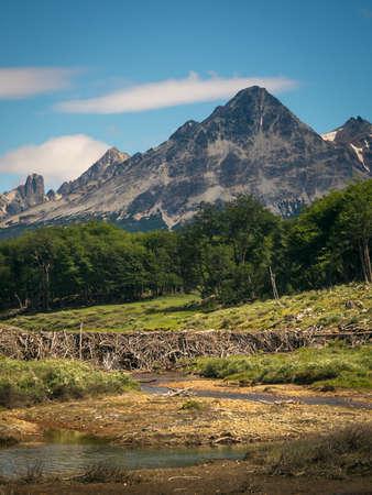 Laguna Esmeralda trail with forest, mountains and beaver dams, Ushuaia, Patagonia, Argentina. beautiful Banco de Imagens - 118841868