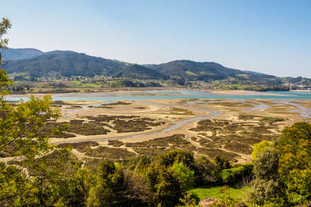 Marshes in the Urdaibai biosphere reserve. sunny day