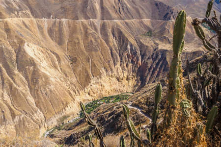 Colca Canyon from Cabanaconde in Peru. The deepest canyon on earth Фото со стока - 131992238